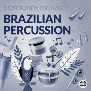 Brazilian Percussion instruments artwork